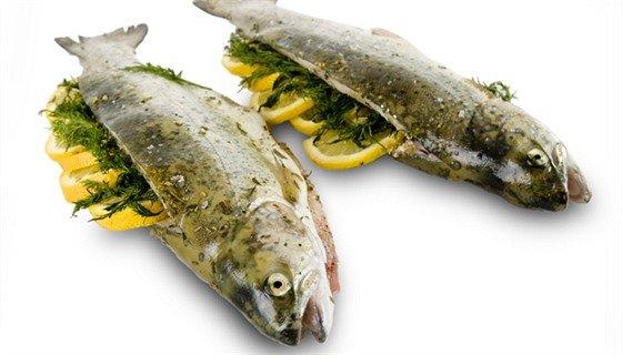 Rybářské recepty
